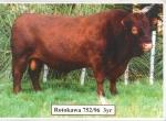 Rotokawa 752/96 3 yr